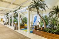 Hollywood Beach Resort Lobby Cabanas Hollywood Fl